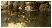 天然温泉満喫プラン